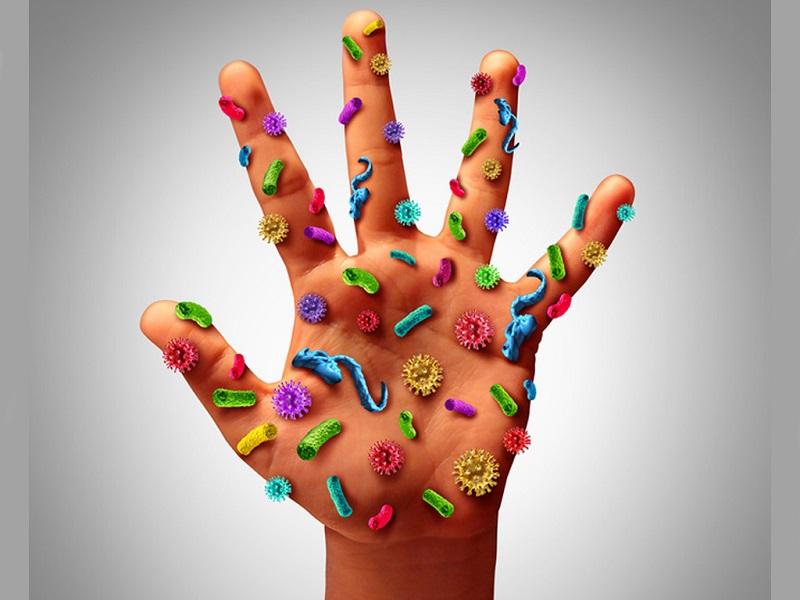 quy trình rửa tay thường quy